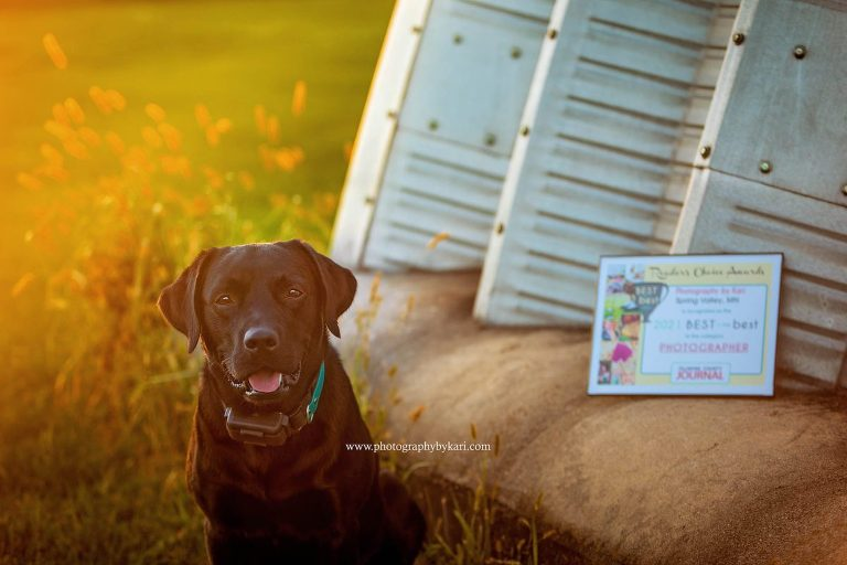 black dog with 2021 best og the best fillmore county photographer plaque